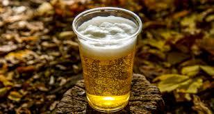 Harvest Pumpkin Ale by Liquor Barn U003e Celebration Blog Post