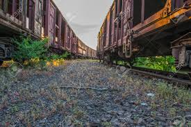 100 Railroad Trucks Small Snake On Path Between Two Stock Photo Picture