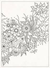 Coloring Pages For Grownups Secret Garden 20 Postcards Johanna Basford