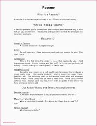 100 Resume Two Pages Page Sample Page Sample New Beautiful Entry