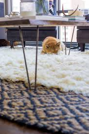 Area Rugs Lowes Area Rugs Circle Area Rugs Layered Carpets Kids