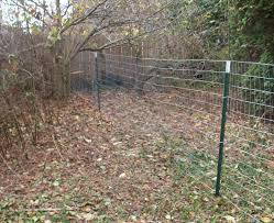 Decorative Garden Fence Home Depot by Decorative Wire Garden Fencing Dolgular Com