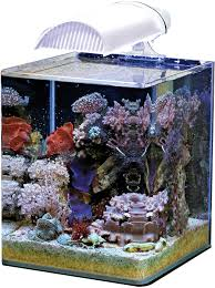 aquarium nano eau de mer nano eau de mer nano marinus complete plus 60 litres dennerle