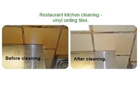 ceiling specialty surface cleaning efs clean