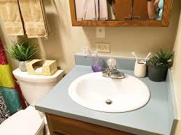 Best Plant For Bathroom by Bathroom Design Amazing Plants For Dark Bathroom Aerogarden