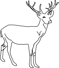 Free Printable Coloring Deer Page 52 With Additional Books