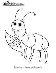 Fun Insect Coloring Page Printable