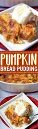 Pinterest Pumpkin Cheesecake Snickerdoodles by Best 25 Pumpkin Pudding Ideas On Pinterest Pumpkin Lasagna