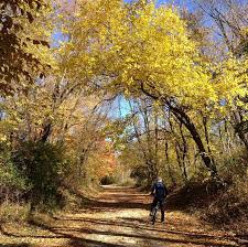Pumpkin Vine Trail Ride by Northern Indiana Bike Trails Nitdc
