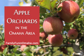 Michigan Pumpkin Patch Apple Orchard by Map Of Omaha Area Pumpkin Patches And Apple Orchards Family Fun