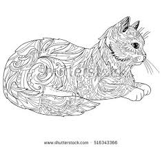 Cat Coloring Book Page Ethnic Decorative Doodle Isolated On White