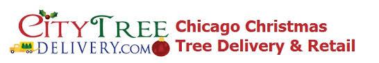 Chicagos Best Fraser Fir Christmas Tree Delivered Setup And