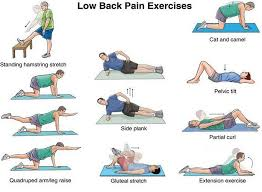Low Back Strength and Flexibility Exercises to Do At Home or Work