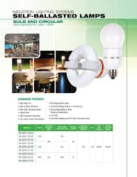 Self Ballasted Lamp Bulb by Fulham Induction Lamp