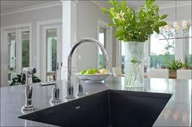 Blanco Diamond Sink Grid by Kitchen Blanco Sink Grid Dishwasher Safe Blanco Sink Cutting