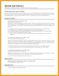 Example Summary For Resume Salesperson Sample