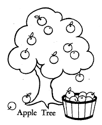 Awesome Collection Of Apple Tree Coloring Page For Your Cover Letter