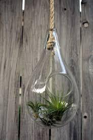 Glass Blown Pumpkins Seattle by Best 25 Hand Blown Glass Ideas On Pinterest Glass Pendants