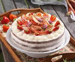 erdbeer rhabarber torte mit schokoladenbiskuit und mascarpone topfencreme