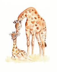 Pumpkin Farm Illinois Giraffe by 2127 Best Giraffes Images On Pinterest Giraffes Giraffe