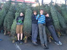 Seattle Christmas Tree Disposal 2014 by My Ballard Boy Scout Troop Christmas Tree Lot To Open This Saturday