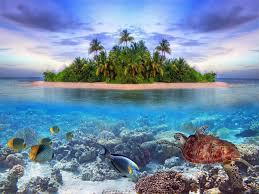 xl fototapete tapete insel sand insel meer palmen