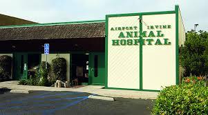 airport animal hospital veterinarians in costa mesa ca vca airport irvine animal hospital