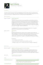 Graphic Design Intern Resume Example
