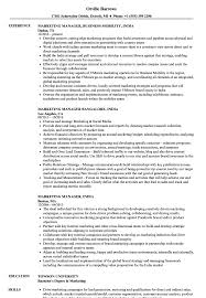 Download Marketing Manager India Resume Sample As Image File