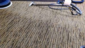 Southern Tier Carpet Care — Clean Lane