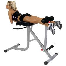 Abs Roman Chair Knee Raises by Bodycraft 45 90 Hyperextension Oblique Roman Chair F670