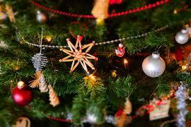 Osh Christmas Trees by Osh Christmas Trees Part 20 1 888 Shop Osh 1 888 746 7674