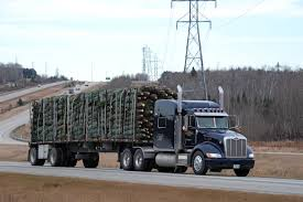 At Last, Some Christmas Trees Haulers Qc Energy Rources Quality Distribution Various Pics From The First Days Of February 2001 On Time Transport Opening Hours 101435 Rue Norman Lachine Silfies And Donmoyer Over 80 Years Bulk Tank Truck Carriers Vaperincanada On Twitter Helping His Dad At Work Challenger Intermodal Container Gt Group Dccc Truck Driver Traing Receives Donated Tanker Trailer Renault T460_truck Tractor Units Year Mnftr 2014 Price R 369 Sm Trucking Pictures Irl Scs Software My Last Excursion 262010 Tankers