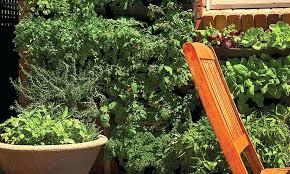 Diy Vertical Garden Wall Natural Better Plant Growth Vegetable