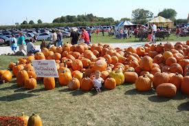 Best Pumpkin Patches Indianapolis by Beasley U0027s Orchard Corn Maze And Pumpkin Patch Danville In Photos