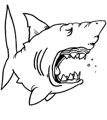 Chibi Shark Jaws Coloring Pages Chibi Shark Jaws Coloring Pages