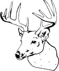 Coloring Pages Of Deer Heads 3