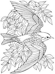 Bird Coloring Pages Epic For Adults