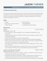 Executive Resume Samples 2016 Luxury Customer Service Examples How To Write A Professional