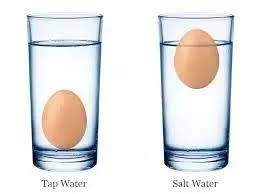 bad eggs float or sink what is the science on how eggs float in salt water salt