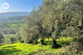 rezepte aus der toskana archives tuscany exclusive