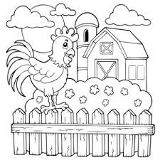 Cock Coloring Pages For Children