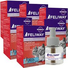 Cat Faeries Coupon Code, 123 Ink Cartridge Coupons Codes Fortnite Coupon Code Asos Student Coupon Code Banggood Vistaprint Promo Tv Noel Clearwater Toyota Service Coupons 76ers Painters Restaurant Cornwall Ny Seatgeek Vs Sthub Ticket Liquidator Vividseats Seatgeek 20off For Firsttime Users Wrestlemiaplans Primesport Com Forever21promo Tylenol Simply Sleep Kal Tire Promotional Kuba Jamall On Twitter Tpick I Found Cheaper Tickets Save 20 Discount Codes Coupons Promo Codes Deals 2019 Groupon