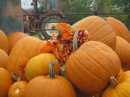 Pumpkin Patch Edmond Oklahoma by 163 Best Oklahoma Images On Pinterest Children Books Christmas