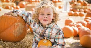 Pinery Bonita Pumpkin Patch by Fall Fun San Diego Harvest Activities For All Ages U2013 Refreshed