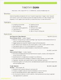 Short Resume Template Professional Examples Luxury Customer Service Sample