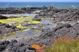 Lava Beds Colorful Algae Cape Perpetua Oregon Coast Stock