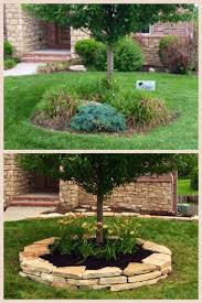 Idea For Our Front Tree - Never Thought To Plant This Much, It ... Garden Design With Backyard Trees Privacy Yard A Veggie Bed Chicken Coop And Fire Pit You Bet How To Illuminate Your With Landscape Lighting Hgtv Plant Fruit Tree In The Backyard Woodchip Youtube Privacy 10 Best Plants Grow Bob Vila 51 Front Landscaping Ideas Designs A Wonderful Dilemma Ramblings From Desert Plant Shade Digital Jokers Growing Bana Trees In Wearefound Home 25 Potted Ideas On Pinterest Indoor Lemon Tree
