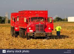 A Diamond T Grain Truck In A Farm Field After The Corn Harvest. This ... Maz Grain Trucks For Sale From Ukraine Buy Truck Au13840 1972 Ford 750 Ta Grain Truck Youtube Frank Mcinenly Auctionsandruckow Farms Ltd Kamaz 6520 Fm14104 Private Treaty Intertional Loadstar Grain Truck V12 Fs17 Farming Simulator 17 Old Chevy Vintage Pinterest Gmc Loading Image Photo Bigstock Intertional 4700 Truck19946 Stewart Farms Mi Cart To Stock 152437540 Alamy 1979 7000 Rich Hill Beds