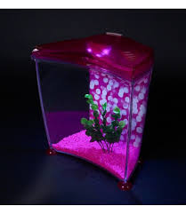 aquarium poisson prix prix aquarium poisson